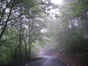 Camino de Hervás