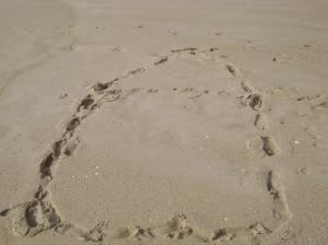 """Nuestro """"Apartamento"""" en la playa"""