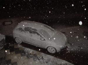 Mi coche Nevado